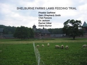 SHELBURNE FARMS LAMB FEEDING TRIAL Phoebe Garfinkel Sam