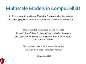 Multiscale Models in Compu Cell 3 D A