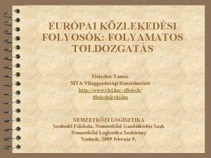 EURPAI KZLEKEDSI FOLYOSK FOLYAMATOS TOLDOZGATS Fleischer Tams MTA