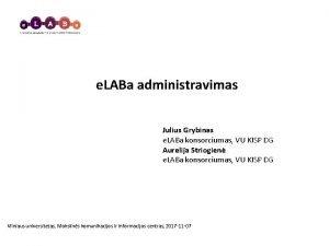 e LABa administravimas Julius Grybinas e LABa konsorciumas