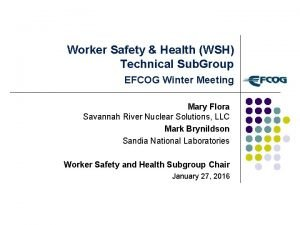 Worker Safety Health WSH Technical Sub Group EFCOG