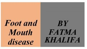 Foot and BY FATMA Mouth KHALIFA disease Foot