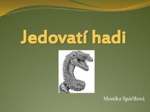 Jedovat hadi Monika Spilov Hadi Serpentes Tda Plazi