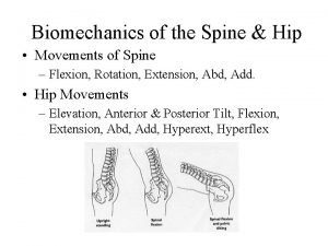 Biomechanics of the Spine Hip Movements of Spine
