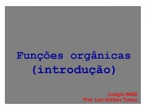 Funes orgnicas introduo Colgio INEDI Prof Luiz Antnio