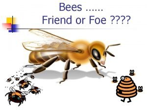 Bees Friend or Foe FICTION In the movie