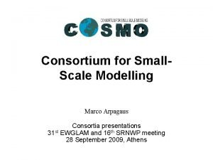 Consortium for Small Scale Modelling Marco Arpagaus Consortia