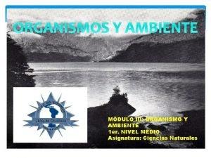ORGANISMOS Y AMBIENTE MDULO III ORGANISMO Y AMBIENTE