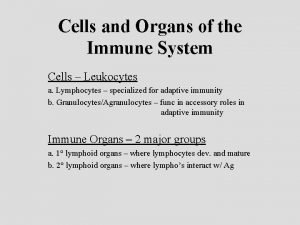 Cells and Organs of the Immune System Cells