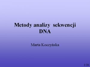 Metody analizy sekwencji DNA Marta Koczyska 126 Plan