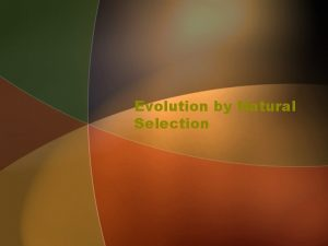 Evolution by Natural Selection The Role of Natural