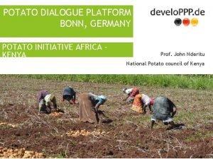 POTATO DIALOGUE PLATFORM BONN GERMANY POTATO INITIATIVE AFRICA