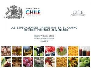 LAS ESPECIALIDADES CAMPESINAS EN EL CAMINO DE CHILE