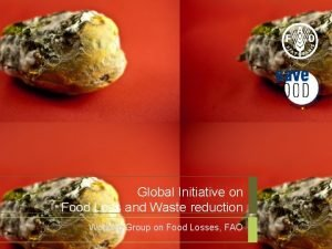 Global Initiative on Food Loss and Waste reduction