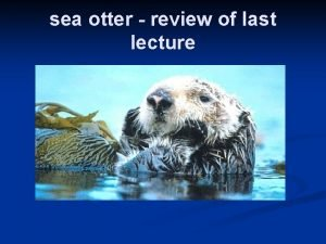 sea otter review of last lecture The last