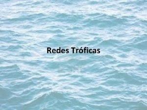 Redes Trficas REDES TRFICAS Caracterstica de las Redes