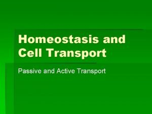 Homeostasis and Cell Transport Passive and Active Transport
