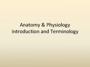 Anatomy Physiology Introduction and Terminology Anatomy of Terms