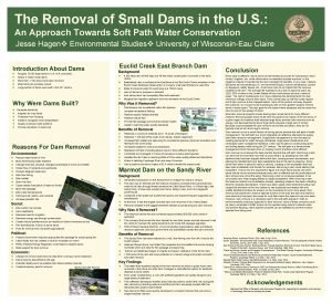 The Removal of Small Dams in the U