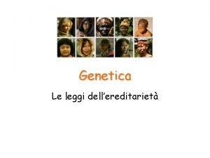 Genetica Le leggi dellereditariet Geni e alleli Le