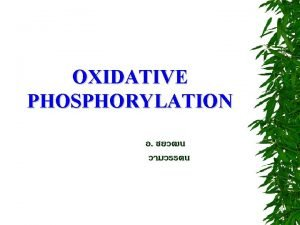 OXIDATIVE PHOSPHORYLATION MITOCHONDRIA OXIDATIVE PHOSPHORYLATION acceptors electron nicotinamide