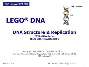 LEGO Lesson 2 PPT DNA LEGO DNA Structure