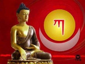 Cuando el sabio medita busca informacin busca a