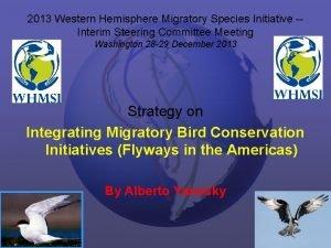 2013 Western Hemisphere Migratory Species Initiative Interim Steering
