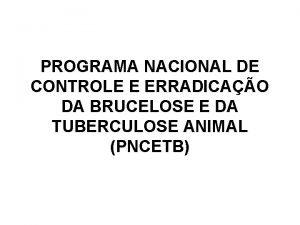 PROGRAMA NACIONAL DE CONTROLE E ERRADICAO DA BRUCELOSE