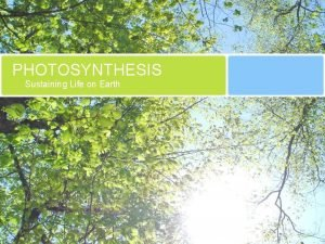 PHOTOSYNTHESIS Sustaining Life on Earth Photosynthetic Organisms Plants