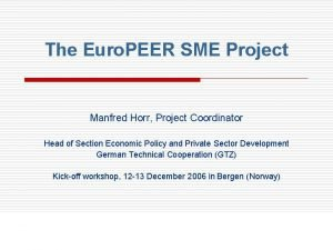 The Euro PEER SME Project Manfred Horr Project