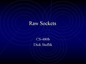 Raw Sockets CS480 b Dick Steflik Raw Sockets