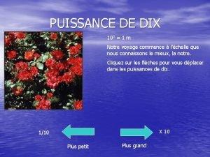 PUISSANCE DE DIX 100 1 m Notre voyage