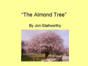 The Almond Tree By Jon Stallworthy All the