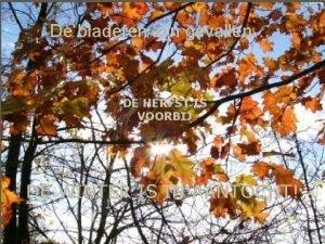 De bladeren zijn gevallen DE HERFST IS VOORBIJ
