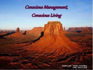 Conscious Management Conscious Living 11242020 Amber Consulting Rudite