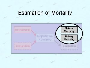 Estimation of Mortality Natural Mortality Recruitment Population Numbers