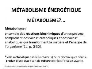 MTABOLISME NERGTIQUE MTABOLISME Mtabolisme ensemble des ractions biochimiques