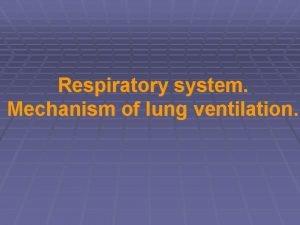 Respiratory system Mechanism of lung ventilation Respiratory system