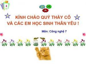 9 KNH CHO QU THY C V CC