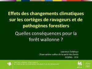 Effets des changements climatiques sur les cortges de