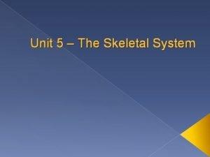 Unit 5 The Skeletal System Intro Skeletal system