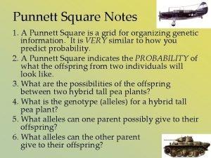 Punnett Square Notes 1 A Punnett Square is
