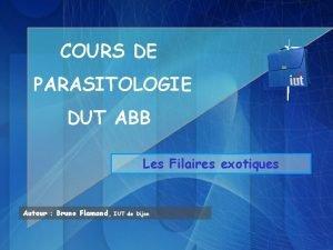 COURS DE PARASITOLOGIE DUT ABB Les Filaires exotiques