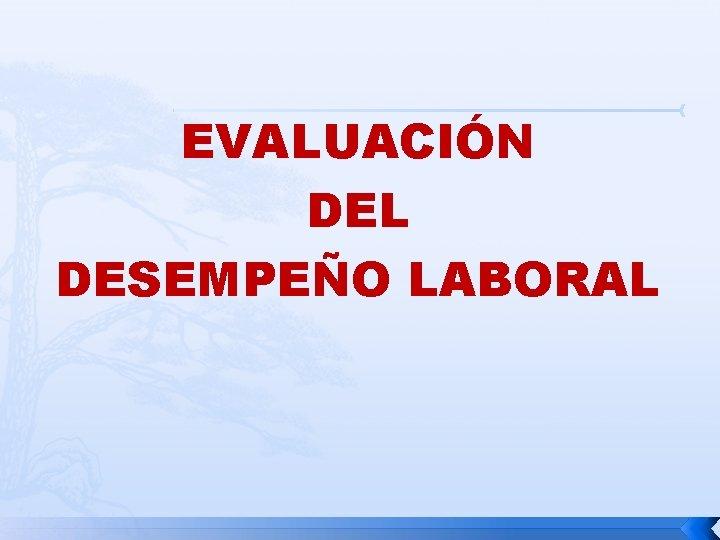 EVALUACIN DEL DESEMPEO LABORAL EVALUACION DEL DESEMPEO LABORAL