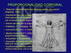 PROPORCIONALIDAD CORPORAL Relacin existente entre las distintas partes