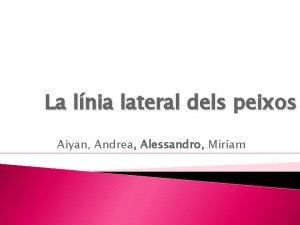 La lnia lateral dels peixos Aiyan Andrea Alessandro