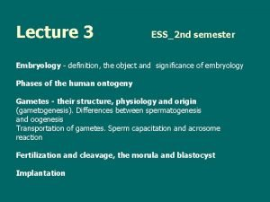 Lecture 3 ESS2 nd semester Embryology definition the