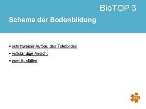 Bio TOP 3 Schema der Bodenbildung schrittweiser Aufbau