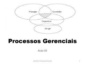Processos Gerenciais Aula 02 dps 2014 2 Processos